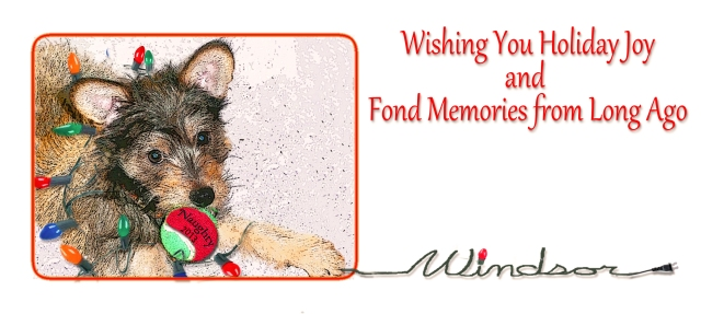 Christmas card of puppy