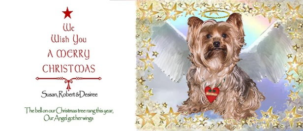 Mesmer the dog Christmas Card