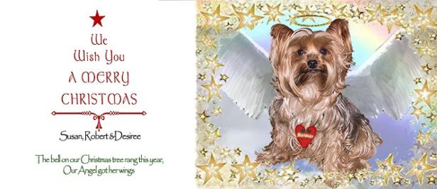 Mesmer the dog Christmas Card