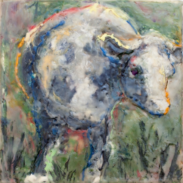 Krieg Baby Bull 9x9
