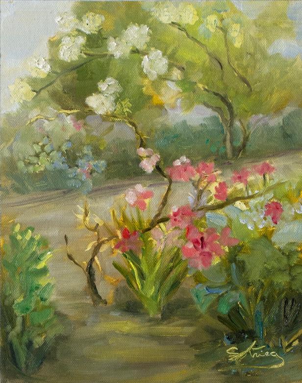 landscape by Susan Krieg